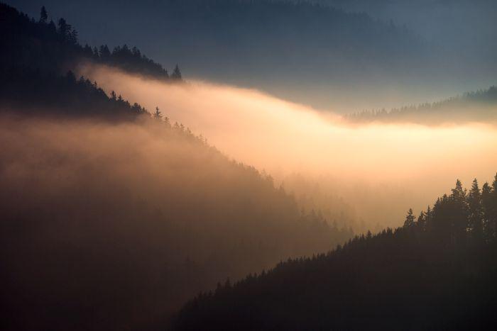 franconian_forest